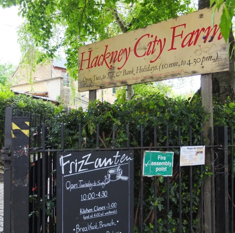 Hackney City Farm © Corinne Martin-Rozès