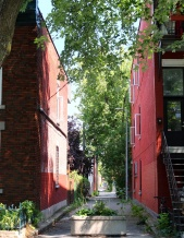 montreal-plateau-mont-royal-corinne-martin-rozes-68