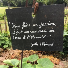 Le_Char_à_banc_Plelo__copyright Corinne_Martin_Rozes (27)