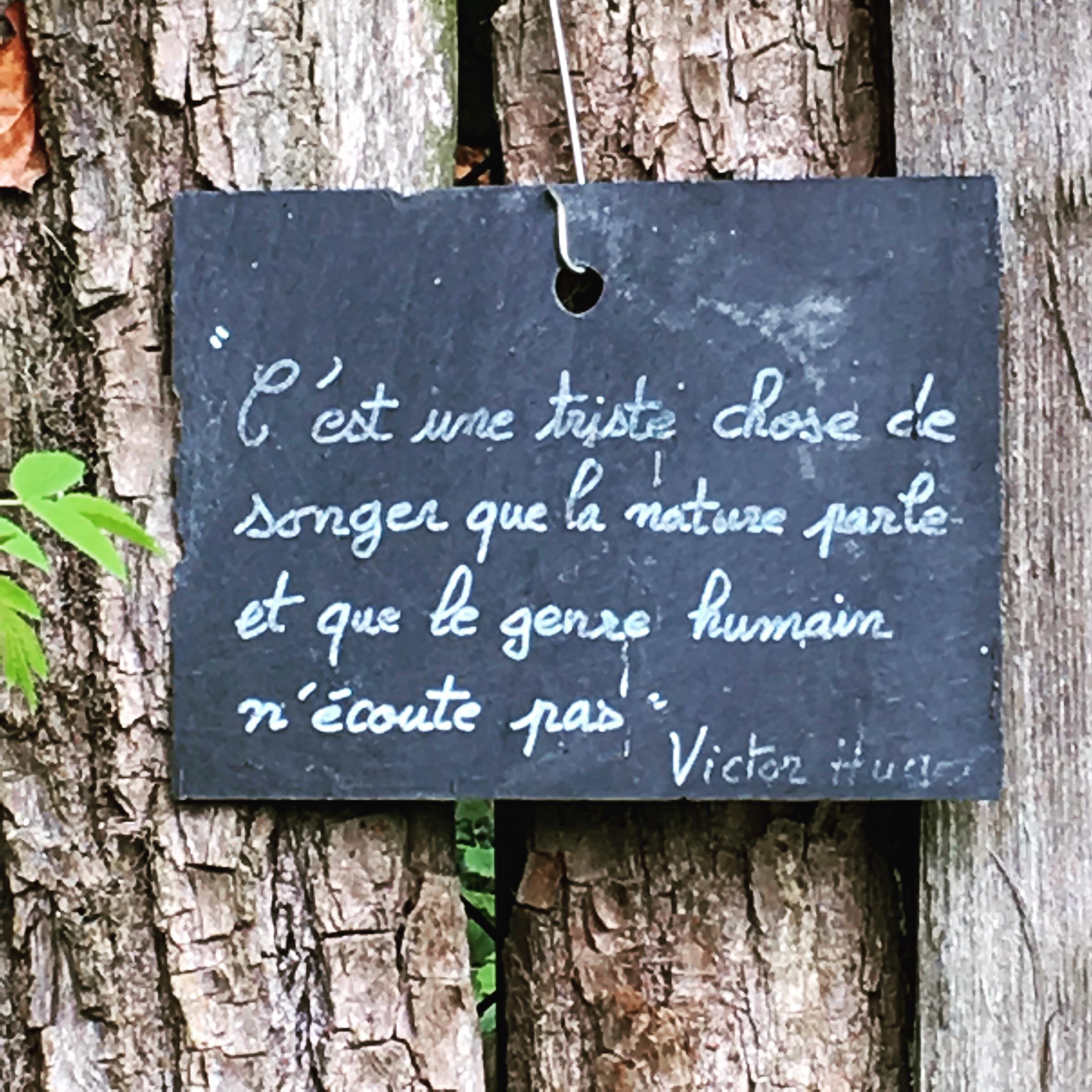 Le_Char_à_banc_Plelo__copyright Corinne_Martin_Rozes (49 ...